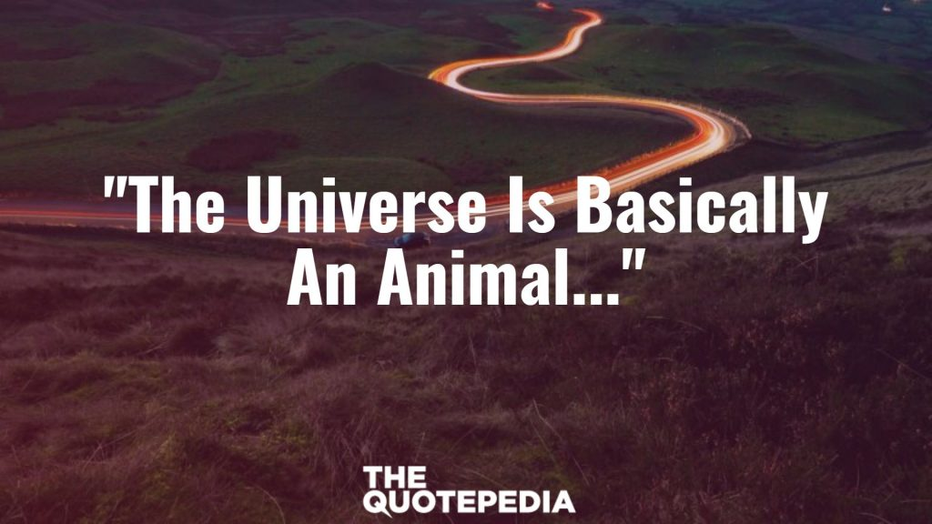 """The Universe Is Basically An Animal..."""