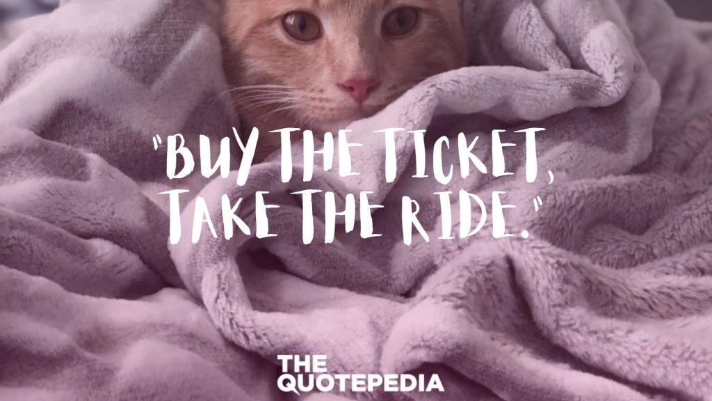 """""""Buy the ticket, take the ride."""""""