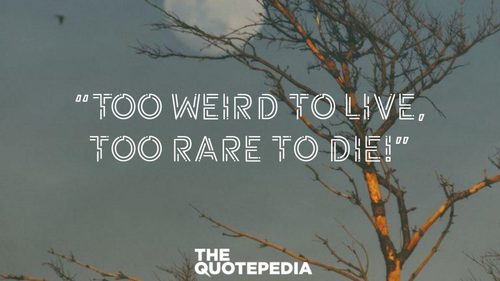 """Too weird to live, too rare to die!"""