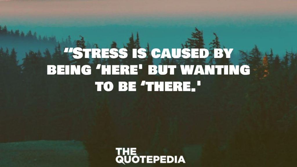 """""""Stress is caused by being 'here' but wanting to be 'there.'"""