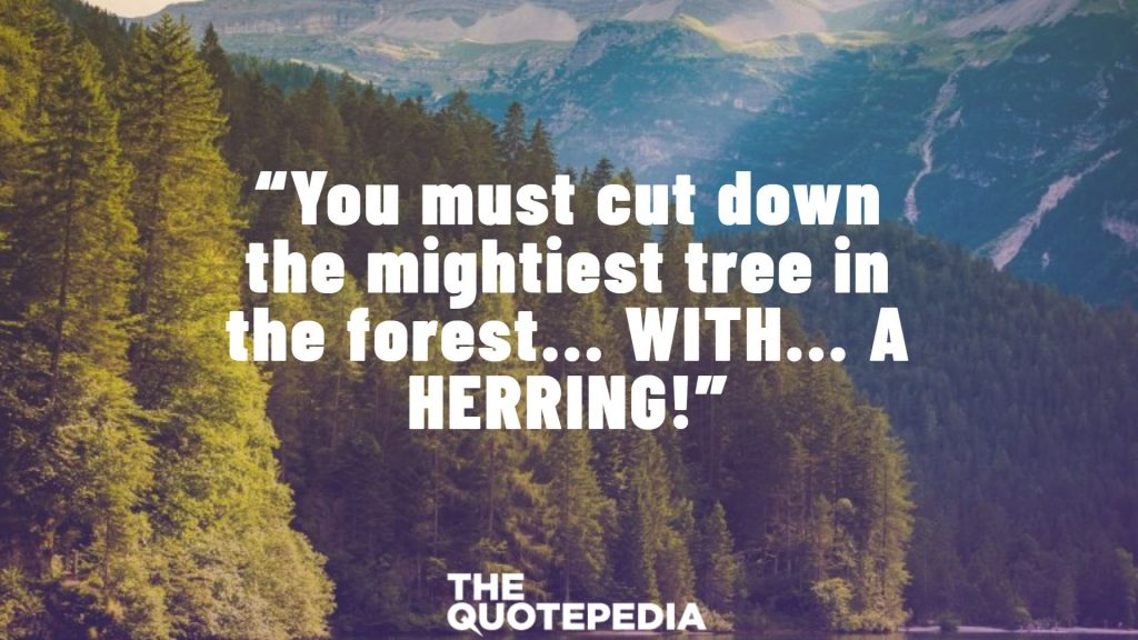 """""""You must cut down the mightiest tree in the forest... WITH... A HERRING!"""""""