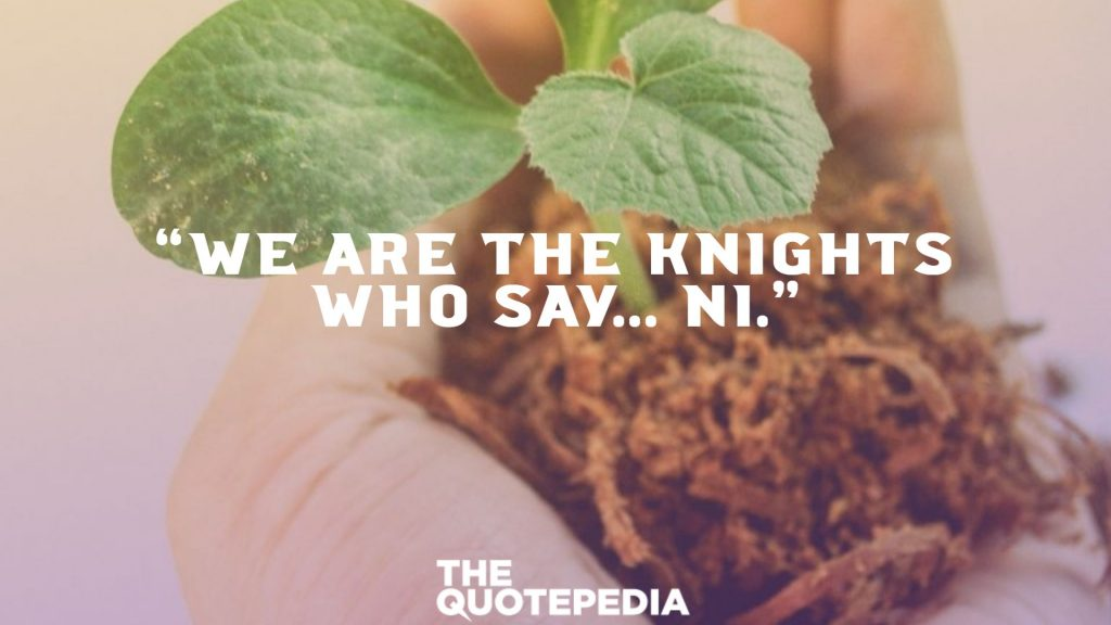 """""""We are the Knights who say... NI."""""""
