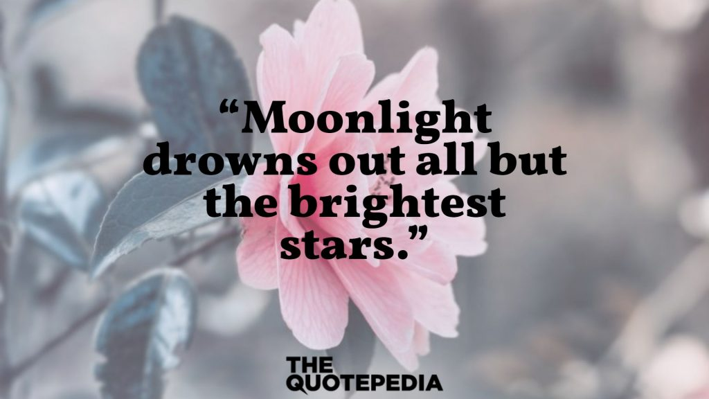 """Moonlight drowns out all but the brightest stars."""