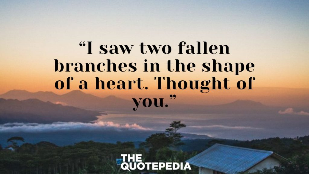 """I saw two fallen branches in the shape of a heart. Thought of you."""