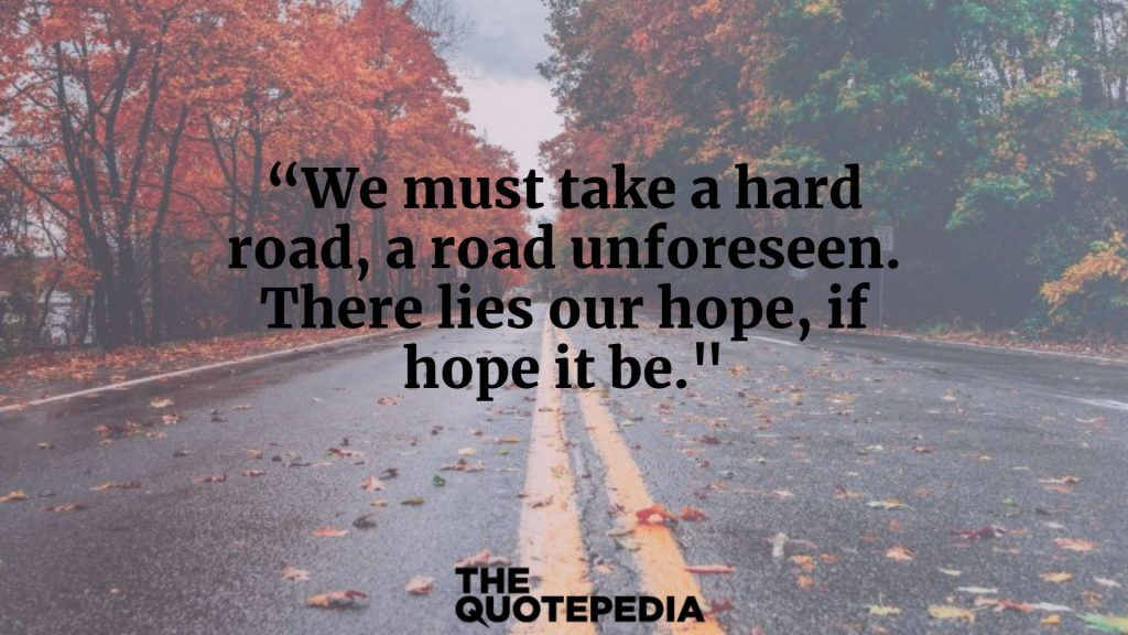 """We must take a hard road, a road unforeseen. There lies our hope, if hope it be."""