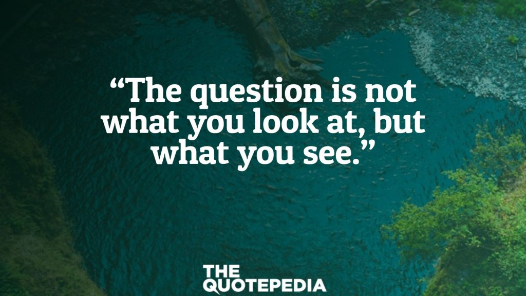 """""""The question is not what you look at, but what you see."""""""