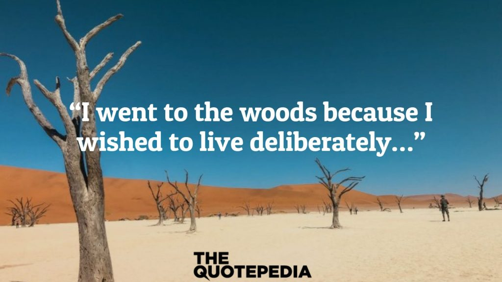 """""""I went to the woods because I wished to live deliberately…"""""""