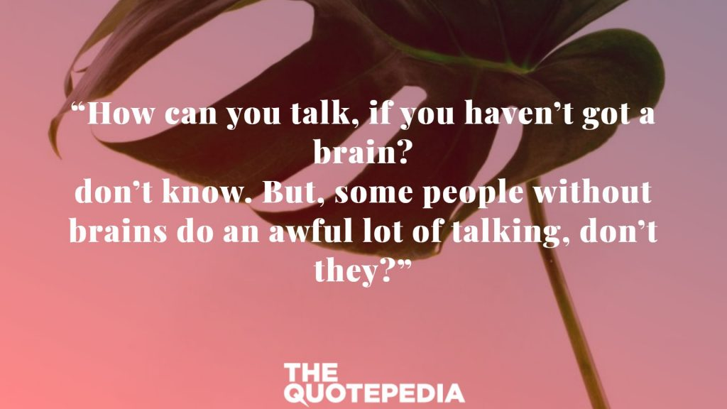 """""""How can you talk, if you haven't got a brain? don't know. But, some people without brains do an awful lot of talking, don't they?"""""""