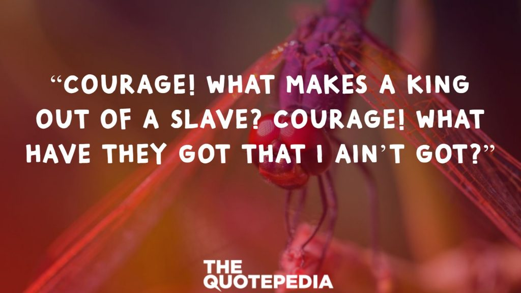 """""""Courage! What makes a king out of a slave? Courage! What have they got that I ain't got?"""""""