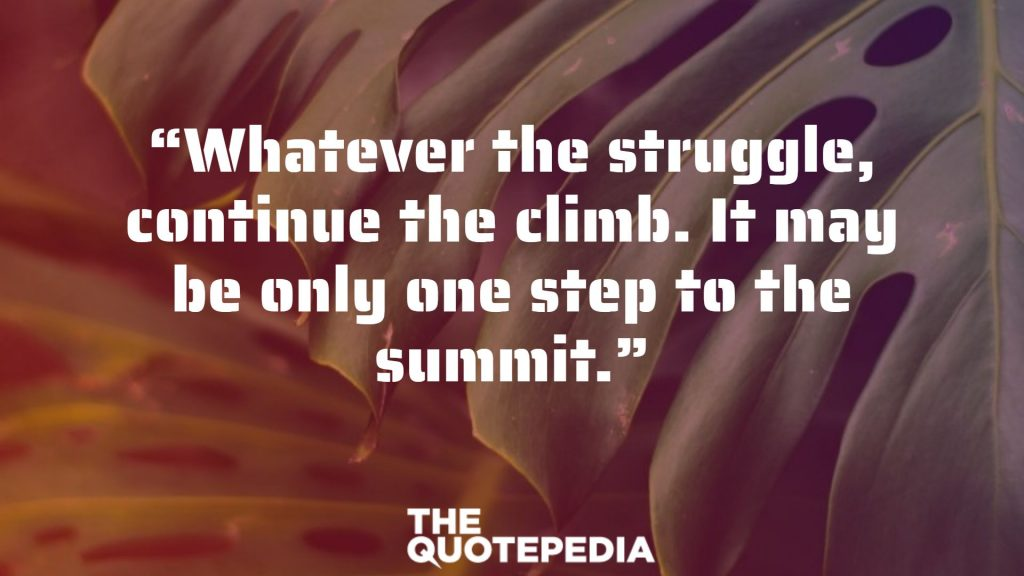 """Whatever the struggle, continue the climb. It may be only one step to the summit."""