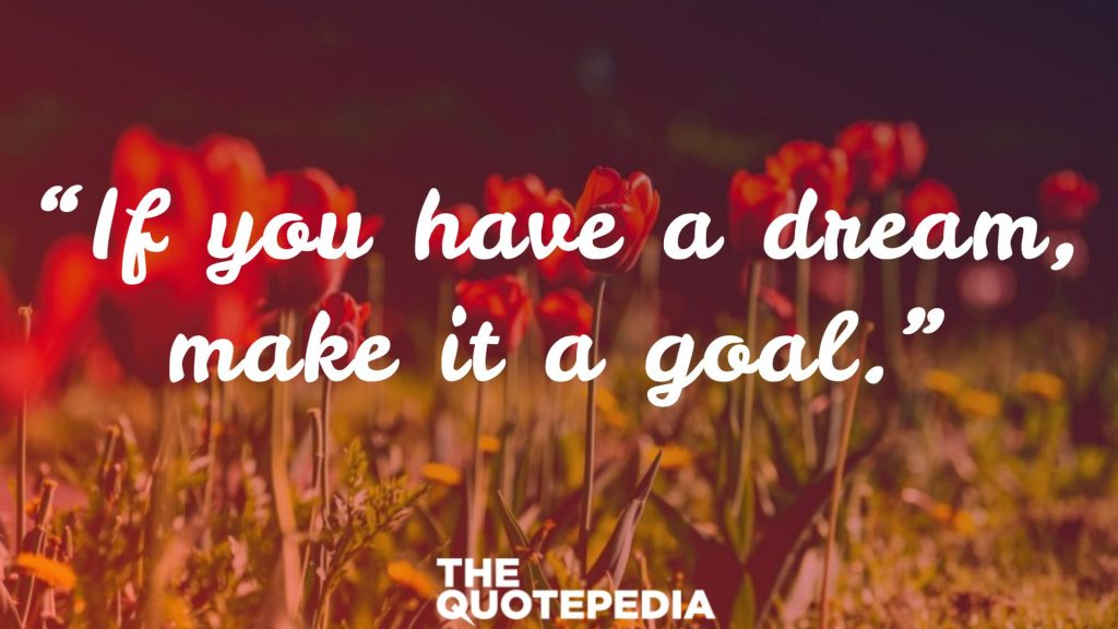 """""""If you have a dream, make it a goal."""""""