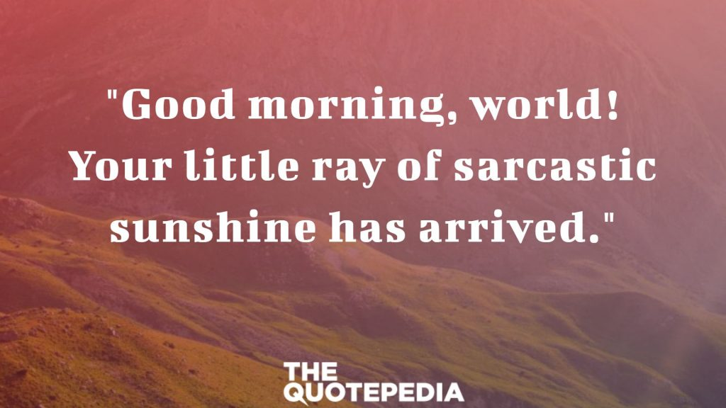 """Good morning, world! Your little ray of sarcastic sunshine has arrived."""