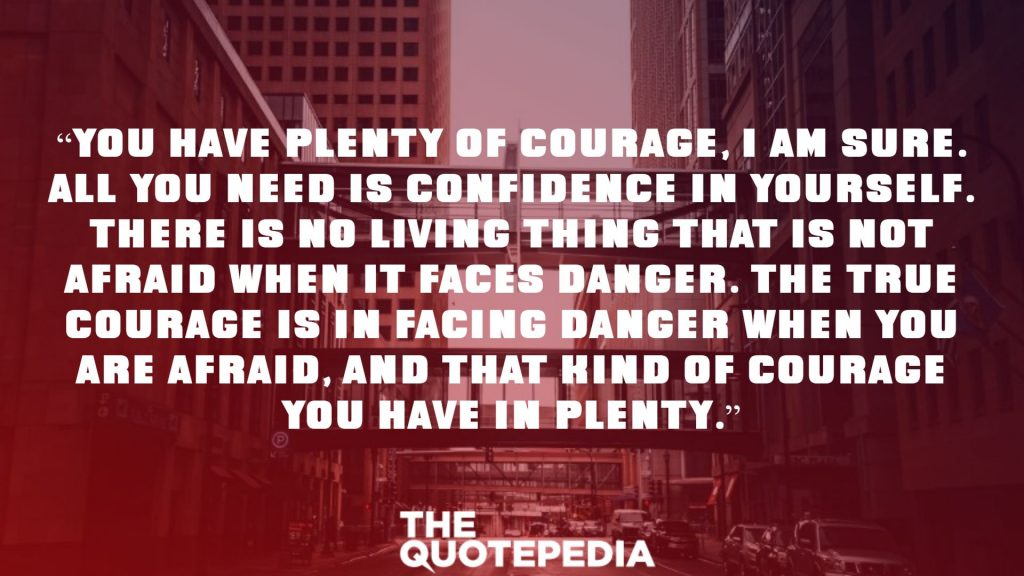"""""""You have plenty of courage, I am sure. All you need is confidence in yourself. There is no living thing that is not afraid when it faces danger. The true courage is in facing danger when you are afraid, and that kind of courage you have in plenty."""""""