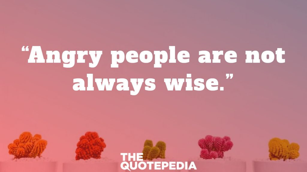 """Angry people are not always wise."""