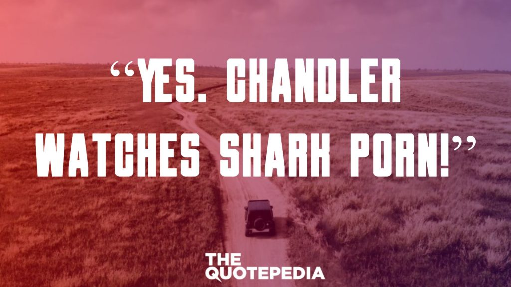 """""""Yes. Chandler watches shark porn!"""""""
