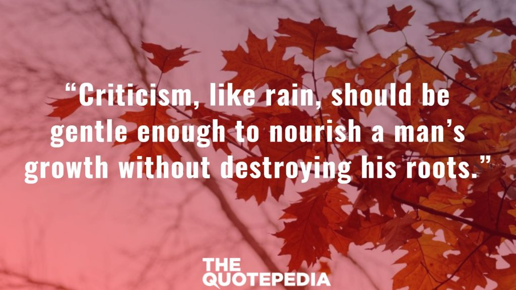 """Criticism, like rain, should be gentle enough to nourish a man's growth without destroying his roots."""