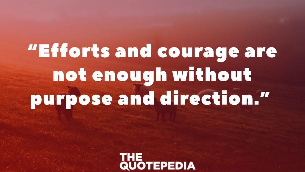 """Efforts and courage are not enough without purpose and direction."""