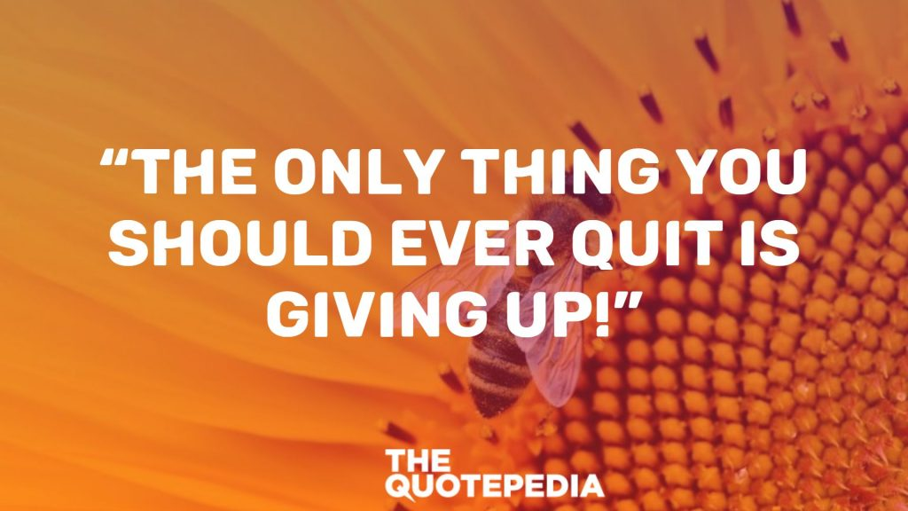 """The only thing you should ever quit is giving up!"""