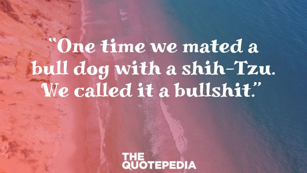 """One time we mated a bull dog with a shih-Tzu. We called it a bullshit."""