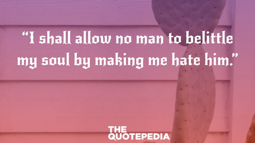 """I shall allow no man to belittle my soul by making me hate him."""