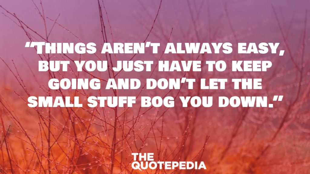 """Things aren't always easy, but you just have to keep going and don't let the small stuff bog you down."""