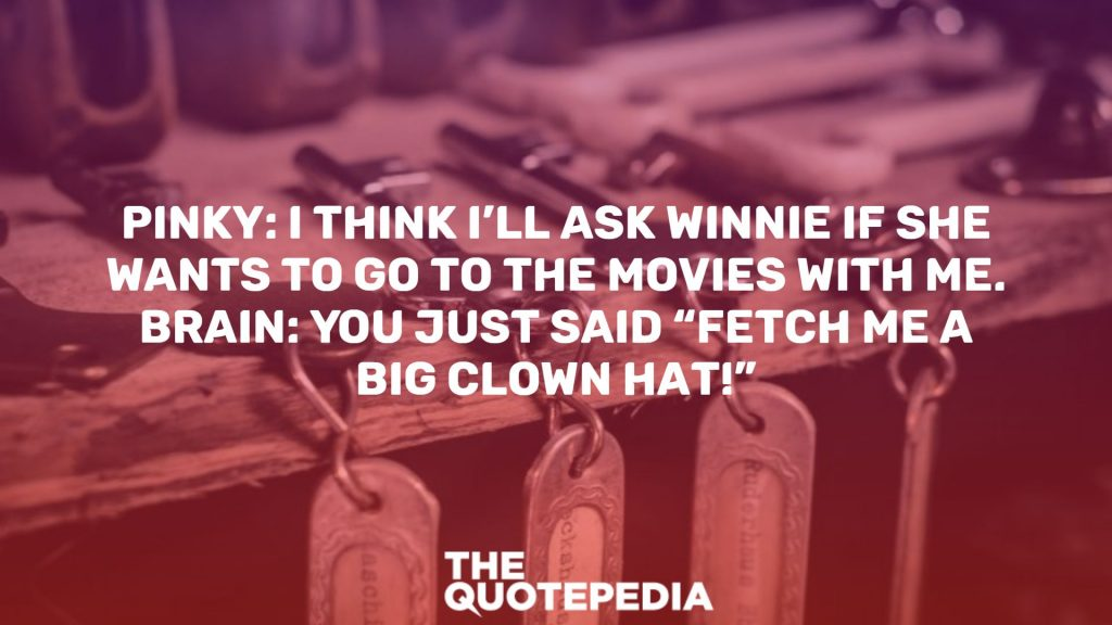 "Pinky: I think I'll ask Winnie if she wants to go to the movies with me. Brain: You just said ""Fetch me a big clown hat!"""