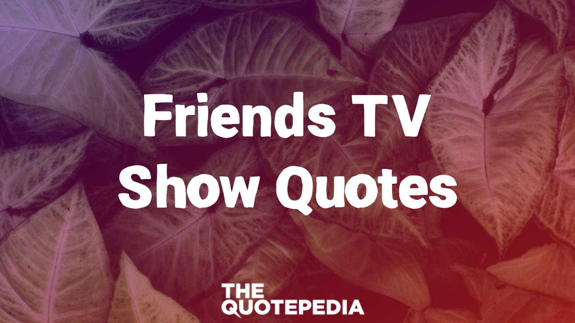 Friends TV Show Quotes