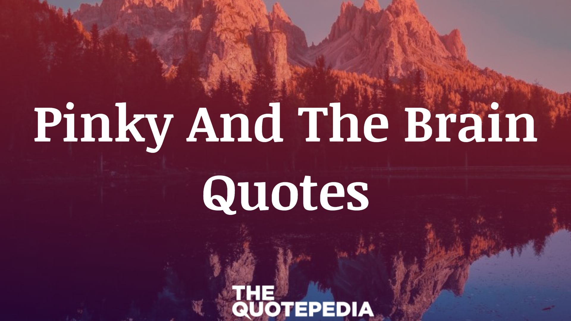 Pinky And The Brain Quotes