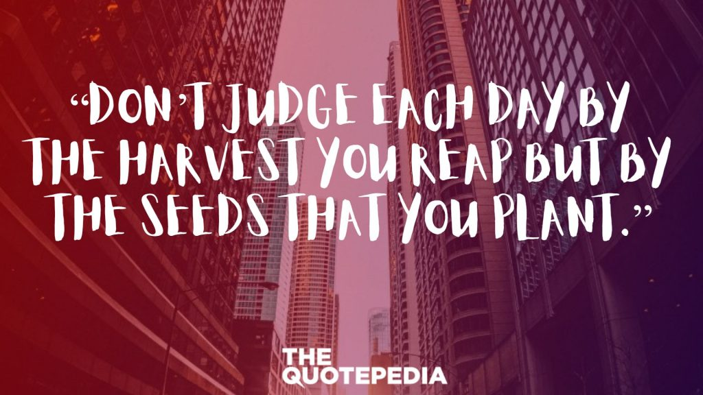 """Don't judge each day by the harvest you reap but by the seeds that you plant."""