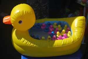 ducky bathtub
