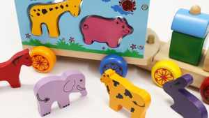 Animal Train Toy