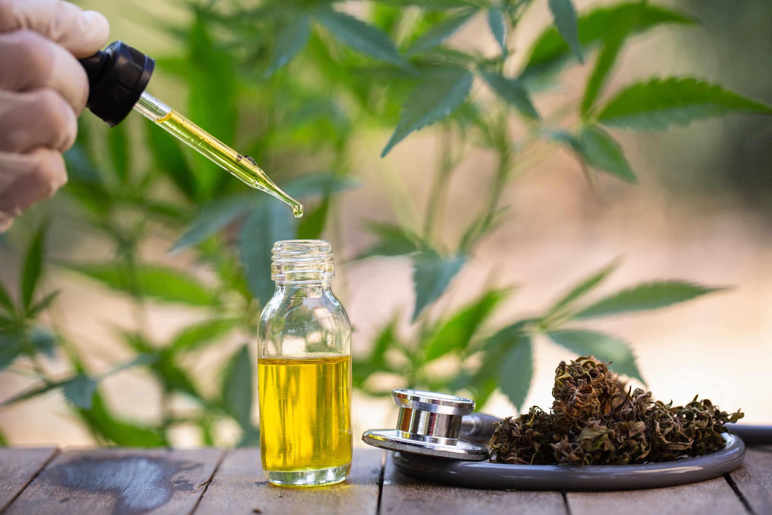 hemp oil can help